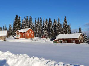 Vinter hos butiken Fjällbjörken Design i Björnrun mellan Bakvattnet och Häggsjövik.