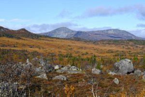 Juthatten till vänster och sannolikt Langvassklumpen i Norge till höger. Lilljuthattflon i förgrunden. Foto © Jörgen Språng