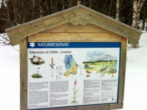 Oldflån-Ansätten naturreservat. Foto © offerdal.se