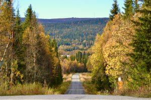 Vägen till Högrun och Önruns Fjällby samt Önrun - Sveriges vidaste vy. Foto © flyttatillfjallen.se