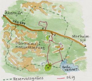 Ledkarta Storholmsjö Naturreservat. Illustration Rut Magnusson.