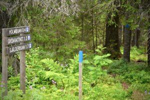 Ledskyltar vid Storholmsjö Naturreservat. Foto © flyttatillfjallen.se